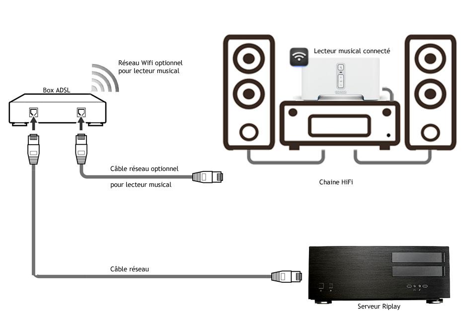 Schéma de branchement lecteur réseau HiFi et serveur musical Riplay